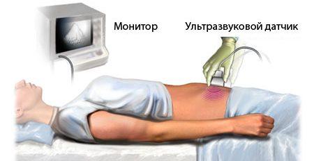 УЗИ брюшной полости какие органы проверяют