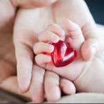 УЗИ сердца детям